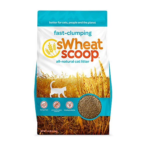 swheat scoop cat litter reviews