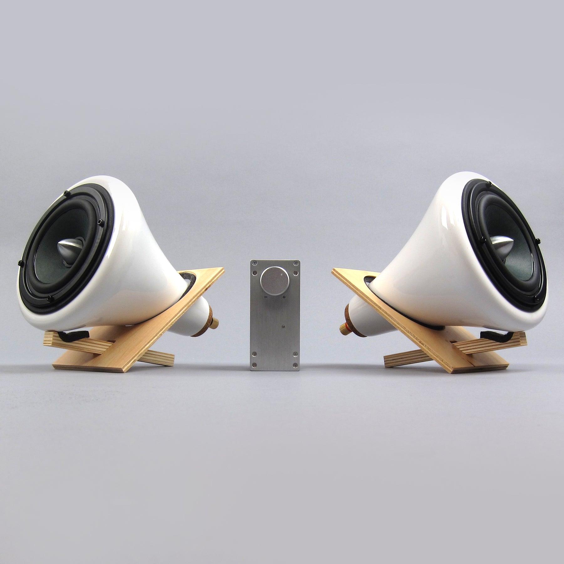 joey roth steel speaker review