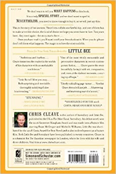 little bee by chris cleave review