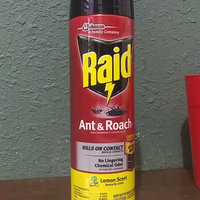 raid ant and roach killer reviews